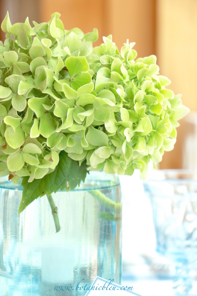 green-hydrangea-blue-canning-jar-summer-coastal-country-tablesetting