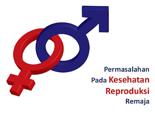 Problem Kesehatan Reproduksi Remaja