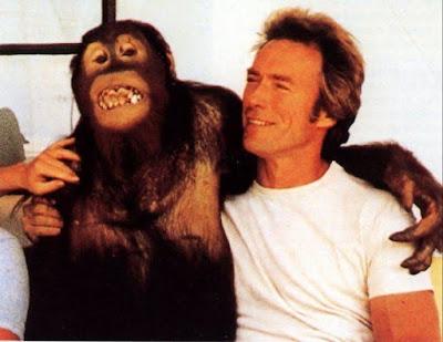 clyde monyet yang terkenal di dunia