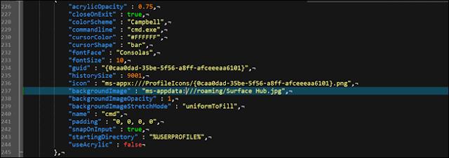 ملف تكوين json في Windows ، يعرض خيارًا مخصصًا للخلفية.