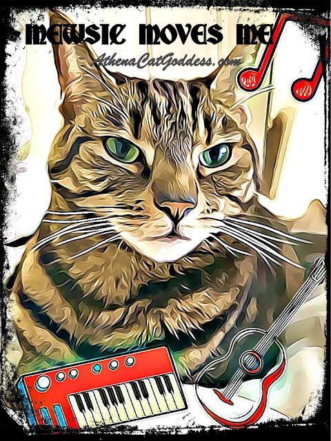 cat mewsic graphic