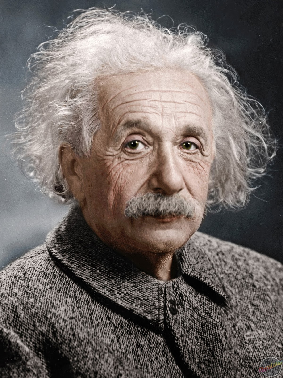 Albert einstein full biography