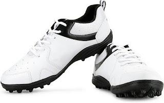 https://www.amazon.in/Vector-Blast-Cricket-Shoes-White/dp/B00PFJPAUG?tag=imsusijr-21