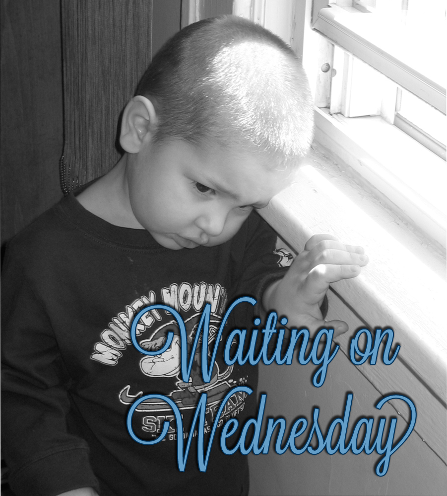 Waiting on Wednesdays #1