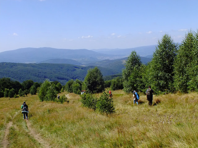 Поляна вблизи горы Розпута