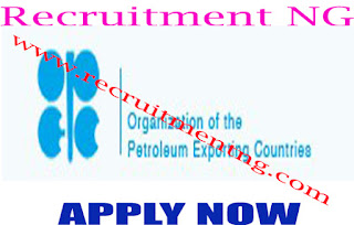 Upstream Oil Industry Analyst and Environmental Coordinator @ OPEC
