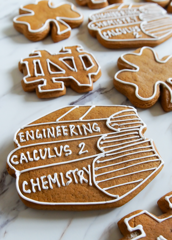 Cookies for College Finals: our favorite gingerbread cookies + Notre Dame | bakeat350.net