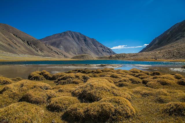 Tso Ltak hidden lake of Ladakh