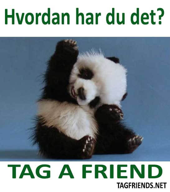 How To Say How Are You? In DANISH