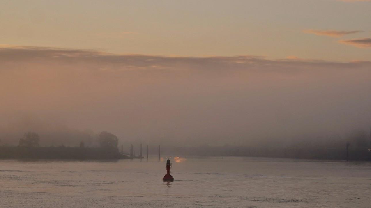 Sonnenaufgang, elbe, hamburger Hafen