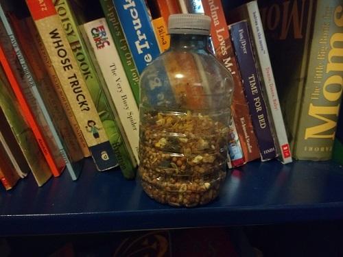 seed shaker instrument sitting on a bookshelf