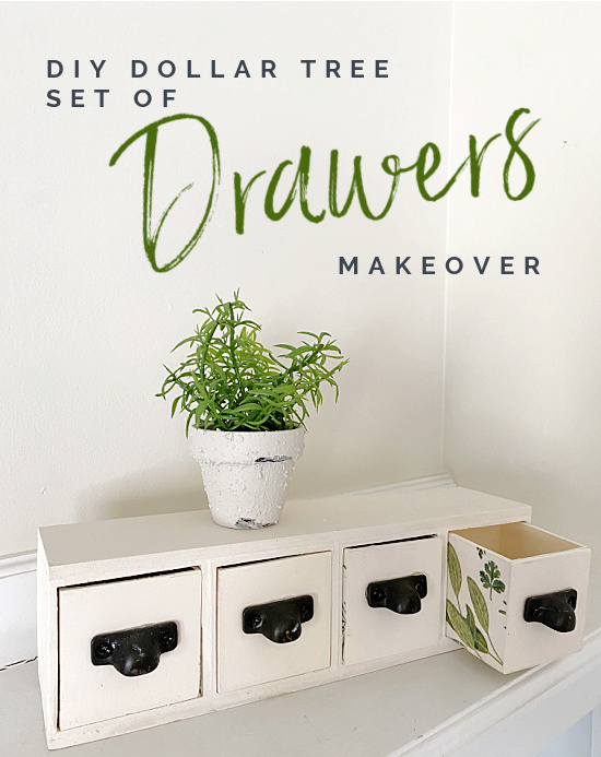 set of drawers with plants and overlay