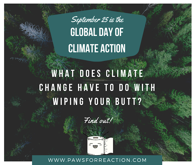 September 25 is a Global Day for Climate Action: What does that have to do with toilet paper?