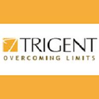 Trigent Software Walkin Drive