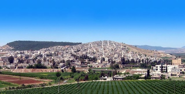 """""""المقاومة الوطنية السورية لتحرير المناطق المحتلة """" تضع نفسها تحت تصرف الجيش السوري"""