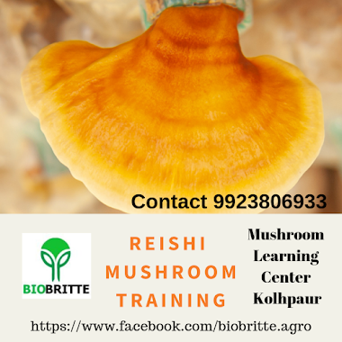 Reishi Mushroom Training-02 Days- 28-29 March 2020