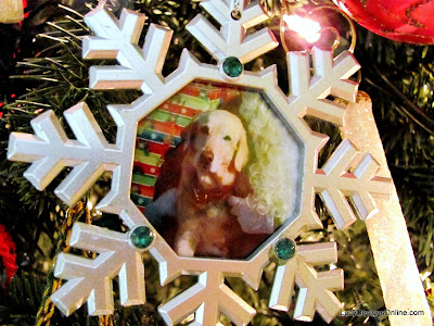 dog photo ornament