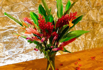 flowers, #payabay, #payabayresort, beauty, paya bay resort,
