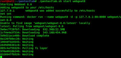 downloading webgoat8 docker image on local machine