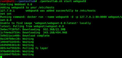 downloading webgoat8 docker image on local machine