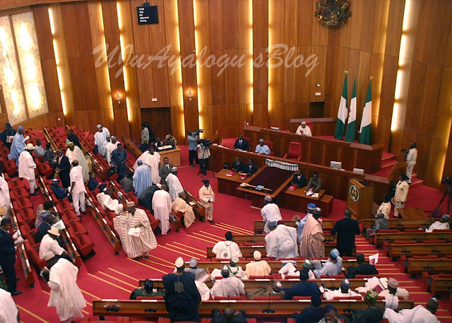 If you hate democracy, propose new system of government – Senator to Presidency [VIDEO]