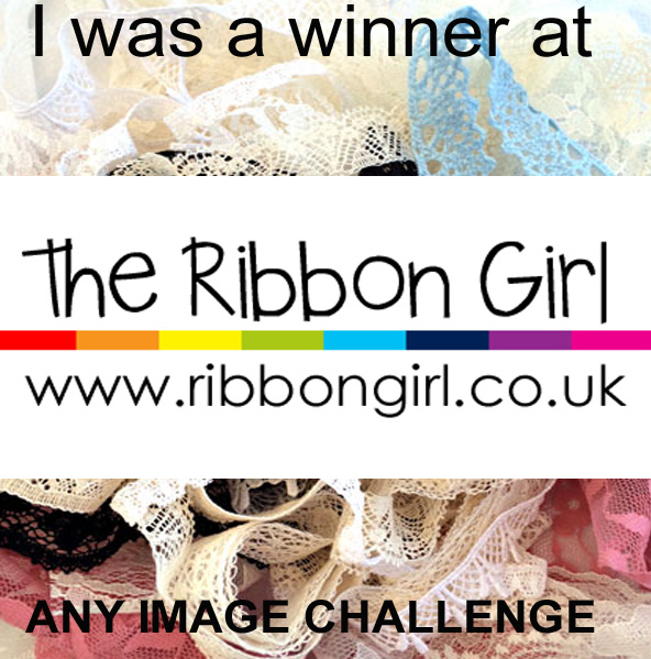 3rd Prize at the Ribbon Girl