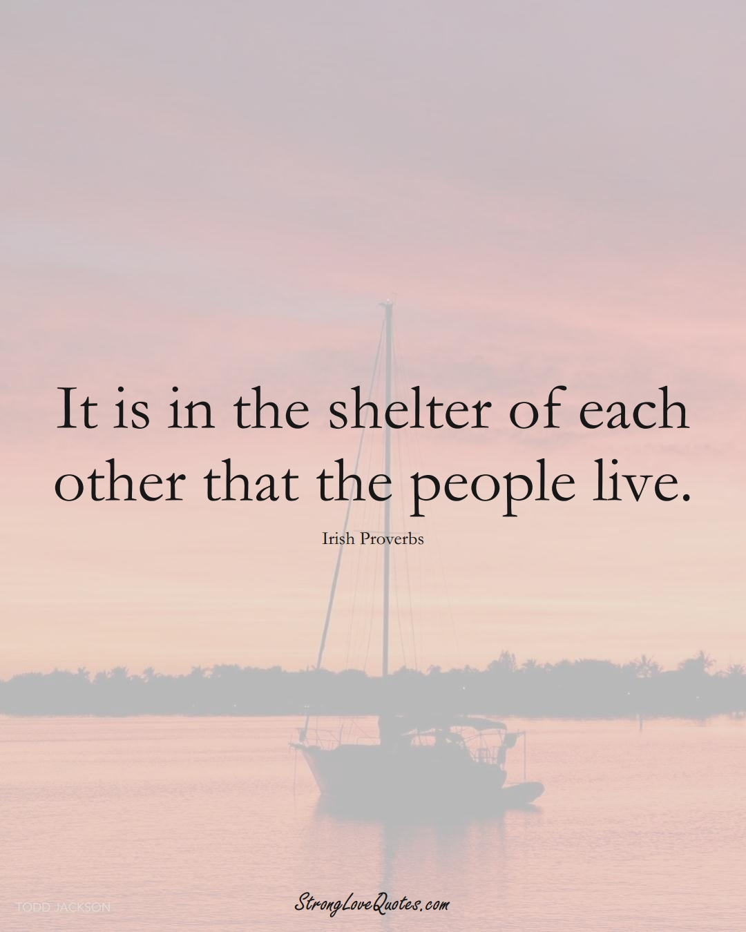 It is in the shelter of each other that the people live. (Irish Sayings);  #EuropeanSayings
