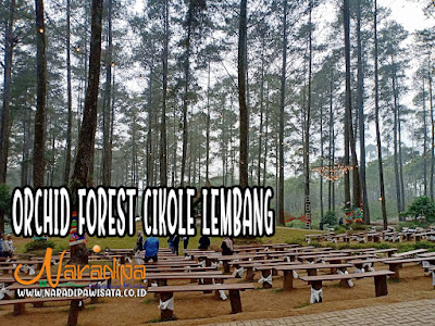 OUTBOUND ORCHID FOREST LEMBANG