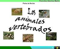 https://cplosangeles.educarex.es/web/edilim/curso_3/cmedio/animales_vertebrados_3/vertebrados/vertebrados.html