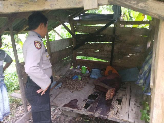 Gangguan Jiwa, Pria di Sulsel Potong Alat Klamin Pakai Sabit