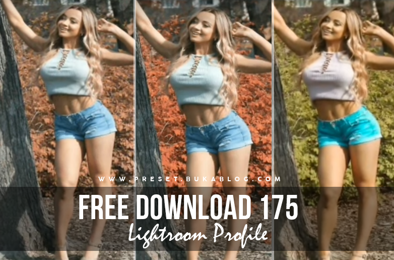 Free Download 175+ Lightroom Profile