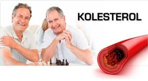 Menurunkan Kolesterol Jahat