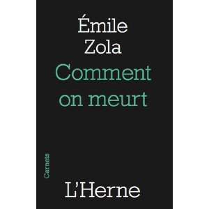 comment on meurt zola analyse