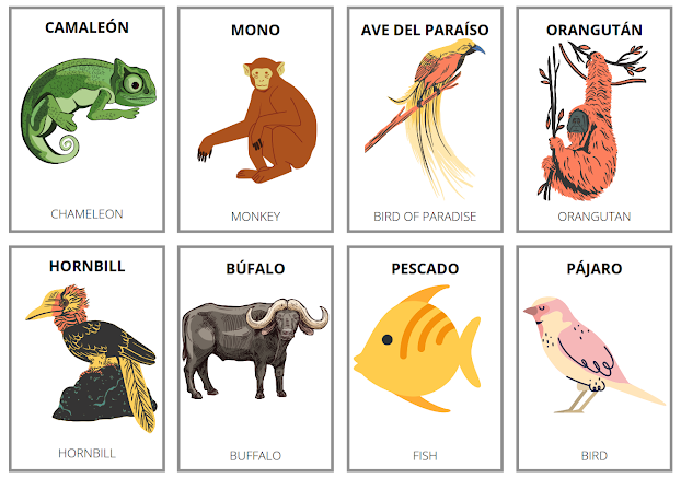 How do you say pets in Spanish
