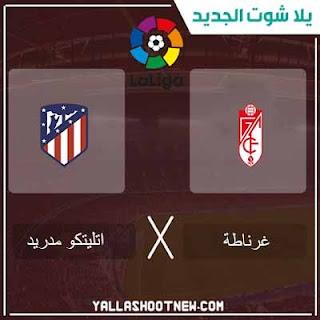 مباراة أتلتيكو مدريد وغرناطة