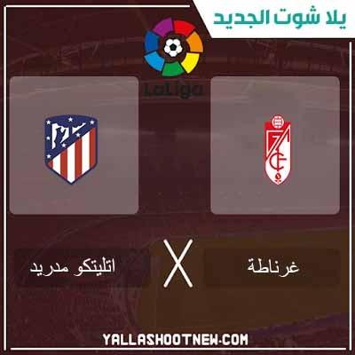 مشاهدة مباراة أتلتيكو مدريد وغرناطة بث مباشر اليوم 08-02-2020 في الدوري الاسباني