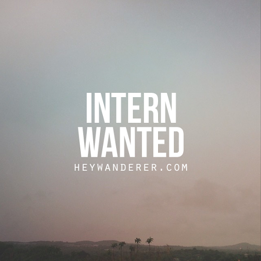 searching for an intern!