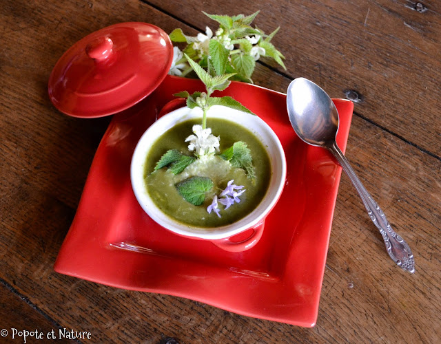 soupe d'orties blanches ©Popote et Nature