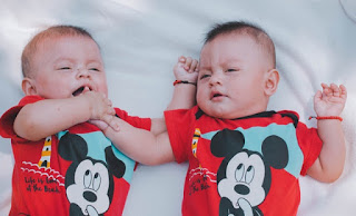 twins are hereditarily