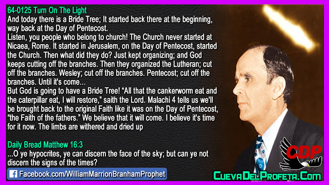 God is going to have a Bride Tree - William Branham Quotes