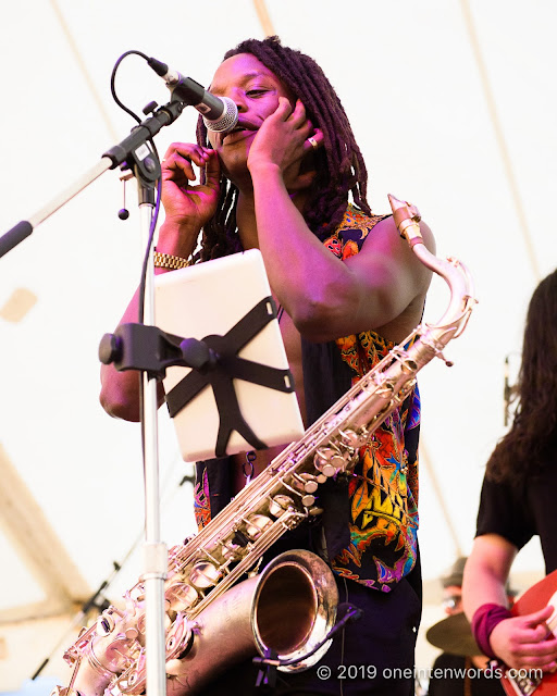 Alysha Brilla and the Brilltones at Hillside Festival on Saturday, July 13, 2019 Photo by John Ordean at One In Ten Words oneintenwords.com toronto indie alternative live music blog concert photography pictures photos nikon d750 camera yyz photographer