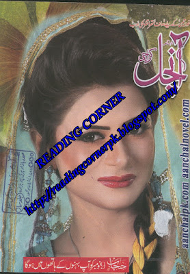 Aanchal Digest November 2015 pdf