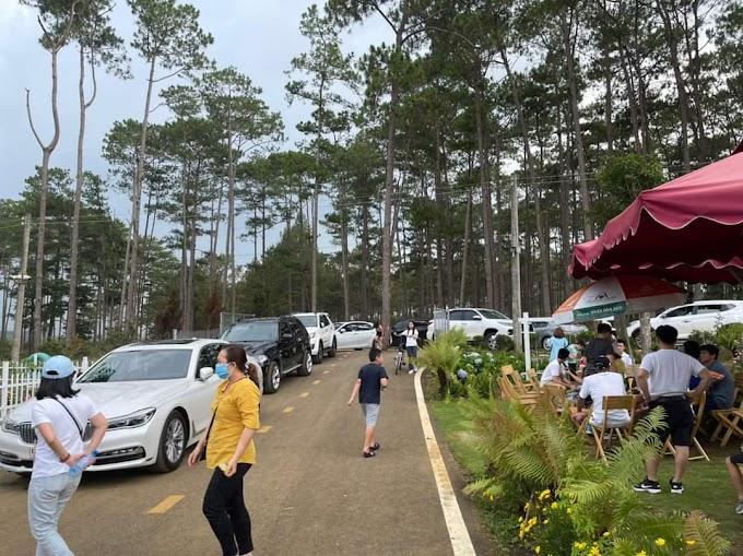 Nhận booking The Tropicana Garden Bảo Lâm