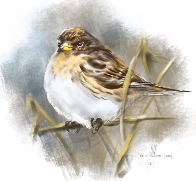 Twite bird painting by Artmagenta