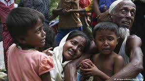rohingya muslim terrorist the tiny man 4