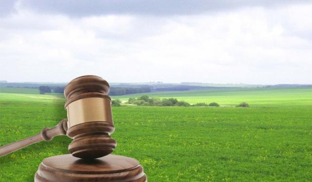 Подано позов про повернення територіальній громаді міста Вишгород 10 земельних ділянок