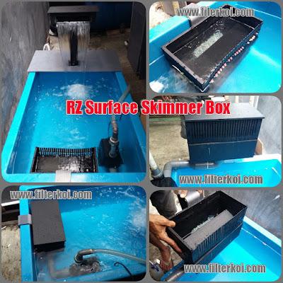 filter kolam ikan koi