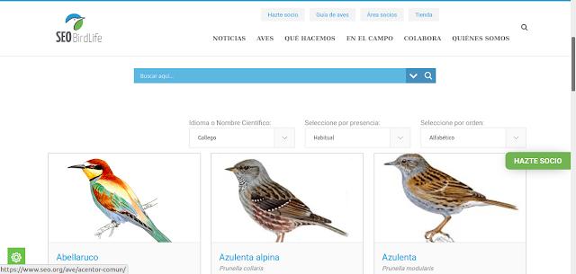 https://www.seo.org/listado-aves-2/?cmbOrden=1&cmbPresencia=1&cmbIdioma=gal&cmbFamilia=1869&letra=A