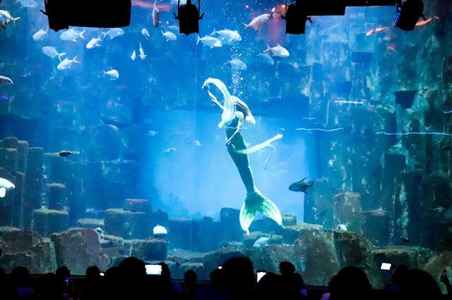 spectacle-sirène-cineaqua-aquarium-paris