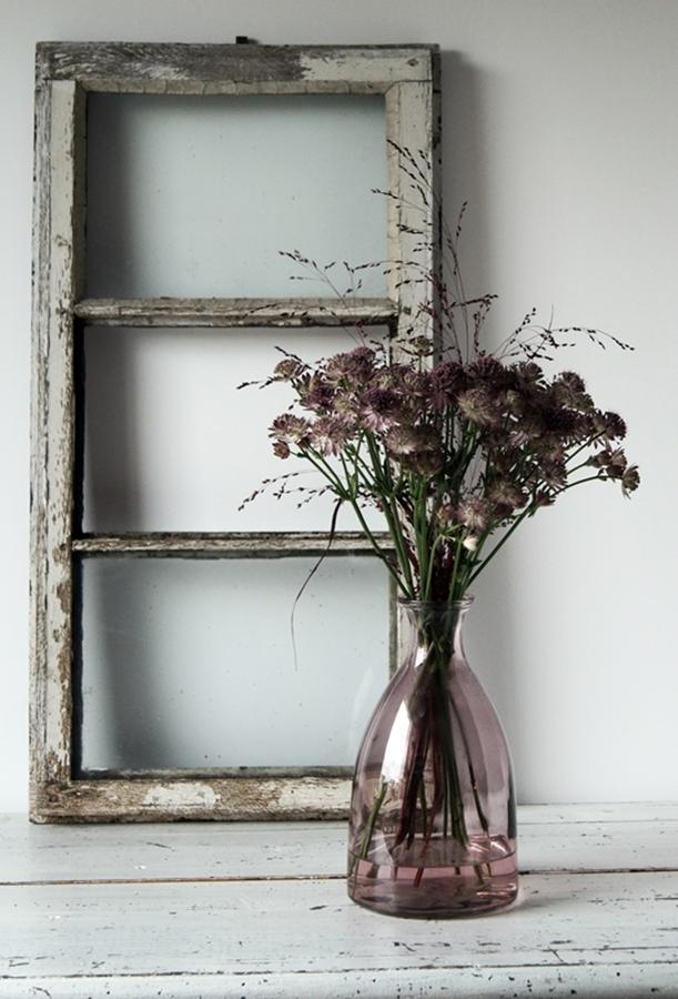 Blog + Fotografie by it's me! - Sterndolde Astrantia - alter Fensterrahmen und weißer Shabbytisch